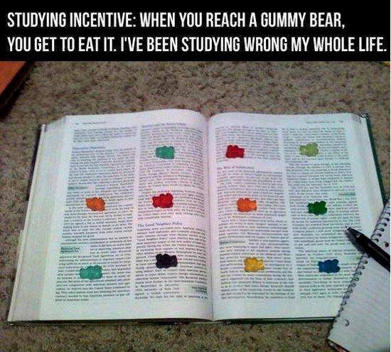 gummy bear study