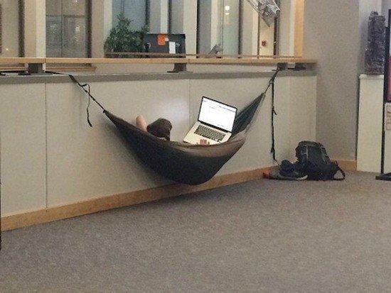 hammock laptop student