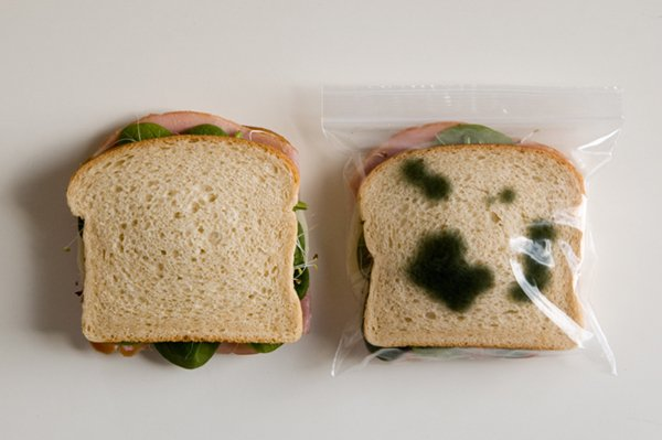 inventions-sandwich-bag