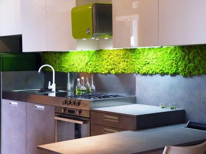 moss-kitchen