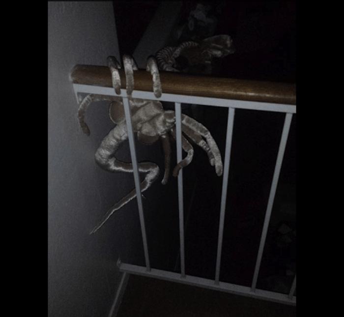 nope-spider