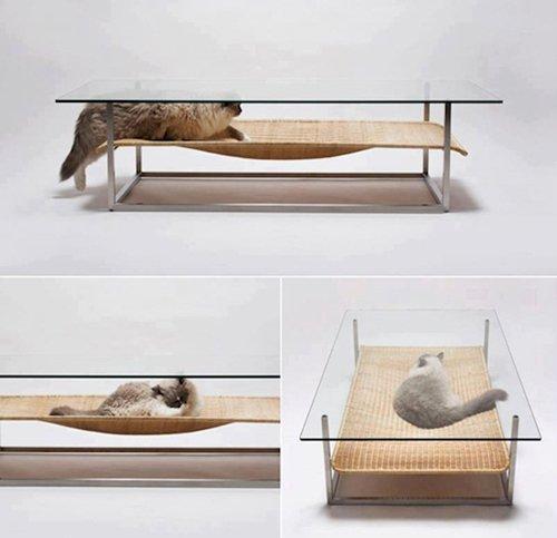 ordinary-objects-cat