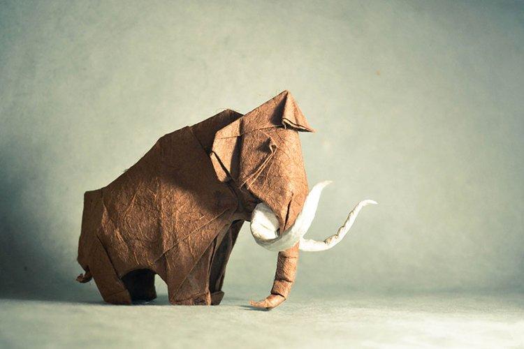 origami-art-gonzalo-garcia-calvo-elephant