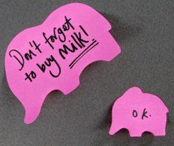 pink elephant sticky notes
