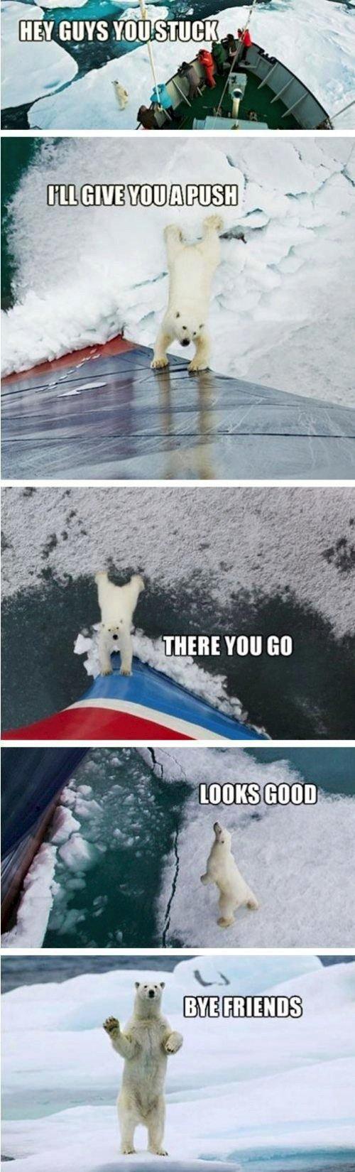 polar-push