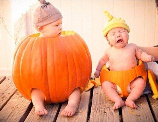 pumpkin babies