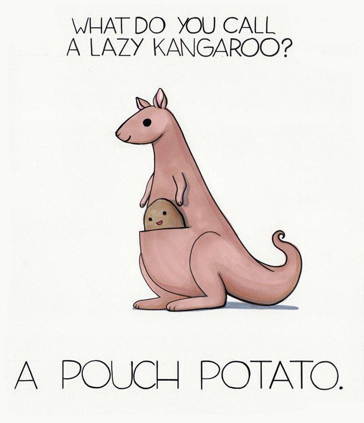 puns-galore-kangaroo