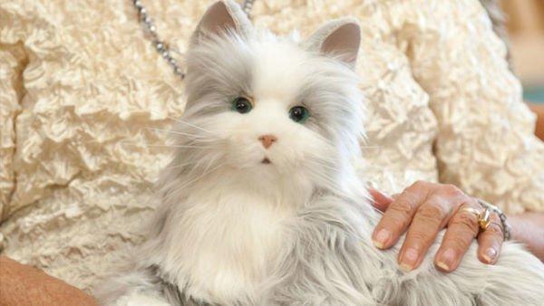 robotic-cat-fur