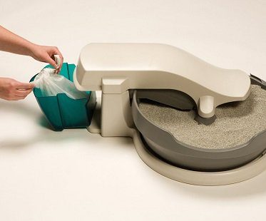 self cleaning cat litter box empty