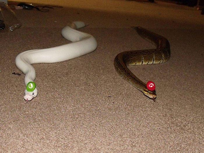 snake-mario