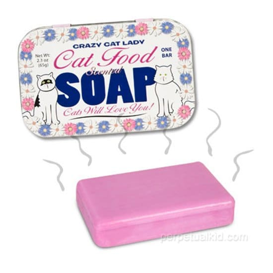 strange-things-cat-soap