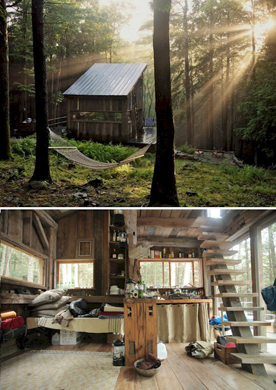 tiny forest house