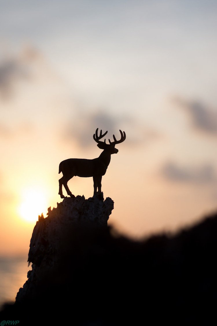 toy-stag