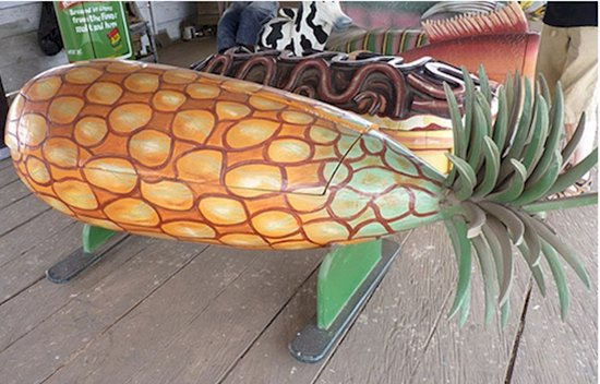 weird-coffins-pineapple