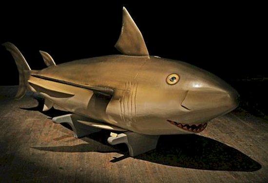 weird-coffins-shark
