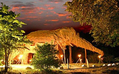 weird-hotels-elephant-top