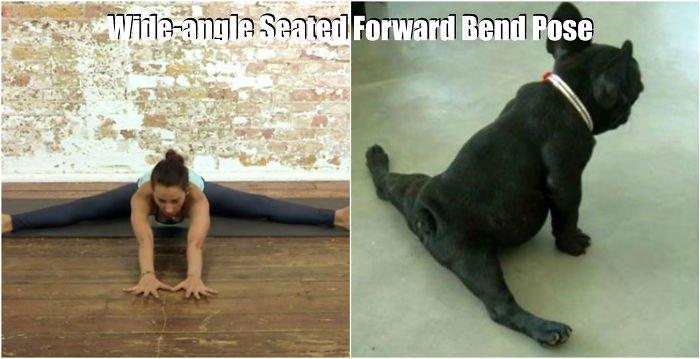 yoga-splits