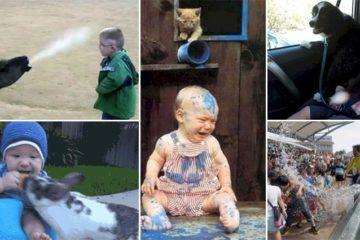 Animals Vs Kids