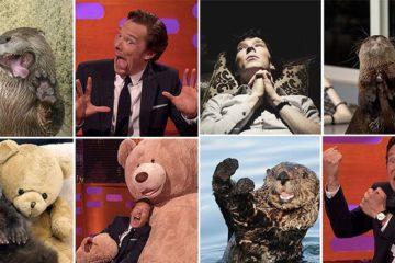 Benedict Cumberbatch Otter Impressions