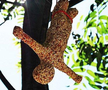Bungee Jumper Bird Feeder tree