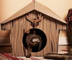 Cabin Cat Playhouse