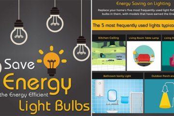 Choosing Energy Efficient Light Bulb