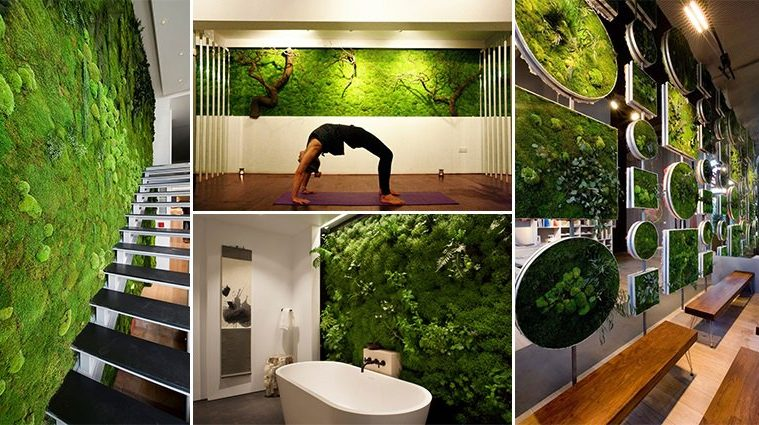 The Latest Interior Design Trend Means Putting Moss On Your Walls