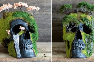 Jack Of The Dust Bonsai Skulls