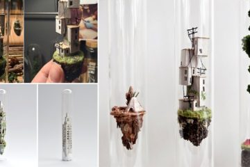 Rosa De Jong Test Tubes Tiny Worlds
