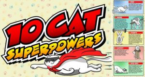 Superpowers Cat