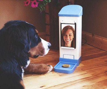 Wifi Pet Treat Dispenser