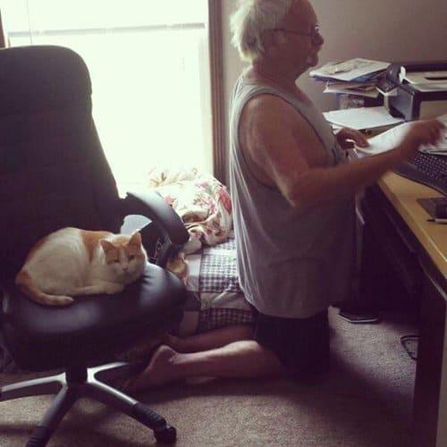 animal-jerks-chair