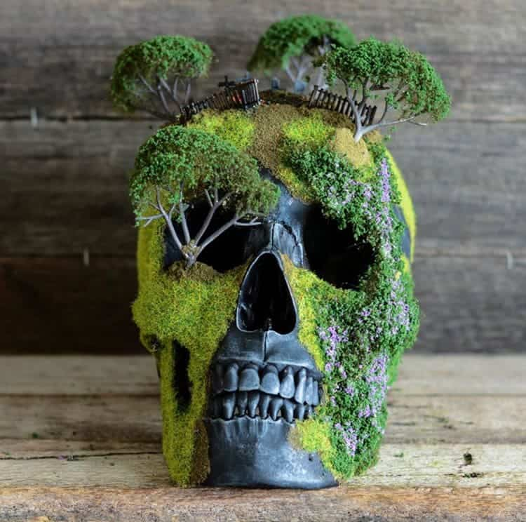 bonsai-skull-tree-jack-dust-front