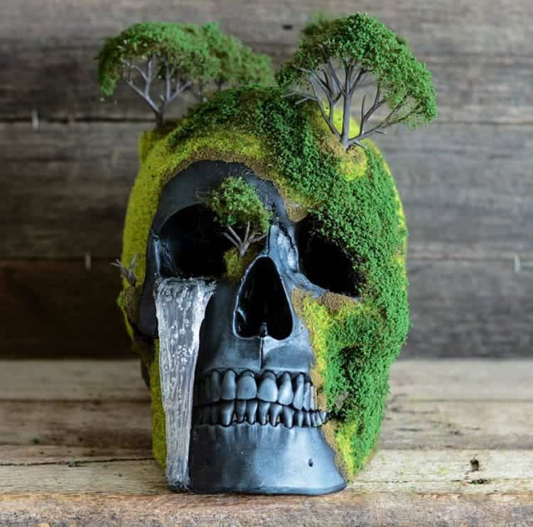 bonsai-skull-tree-jack-dust-moss