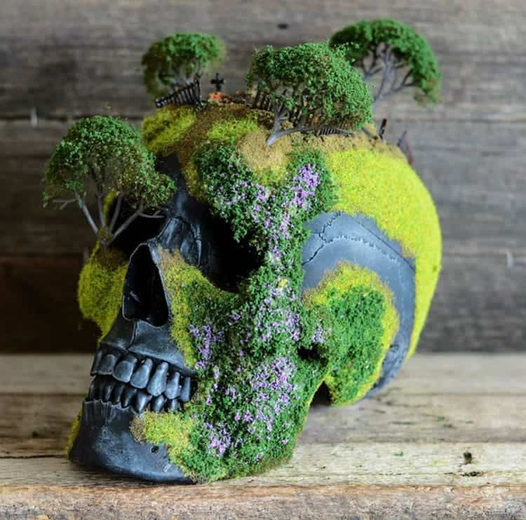 bonsai-skull-tree-jack-dust-trees