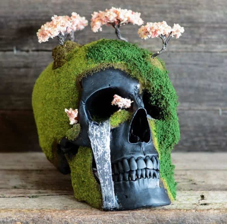 bonsai-skull-tree-jack-dust-waterfall