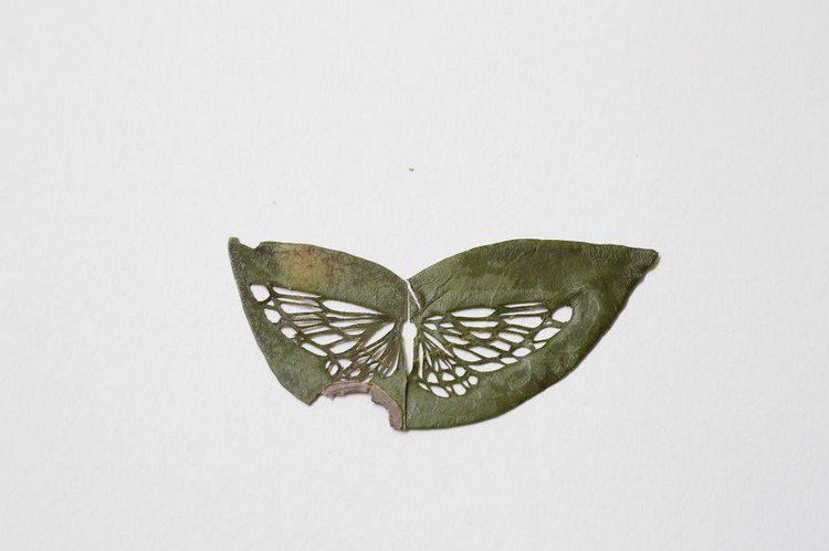 butterfly embroidered leaf art