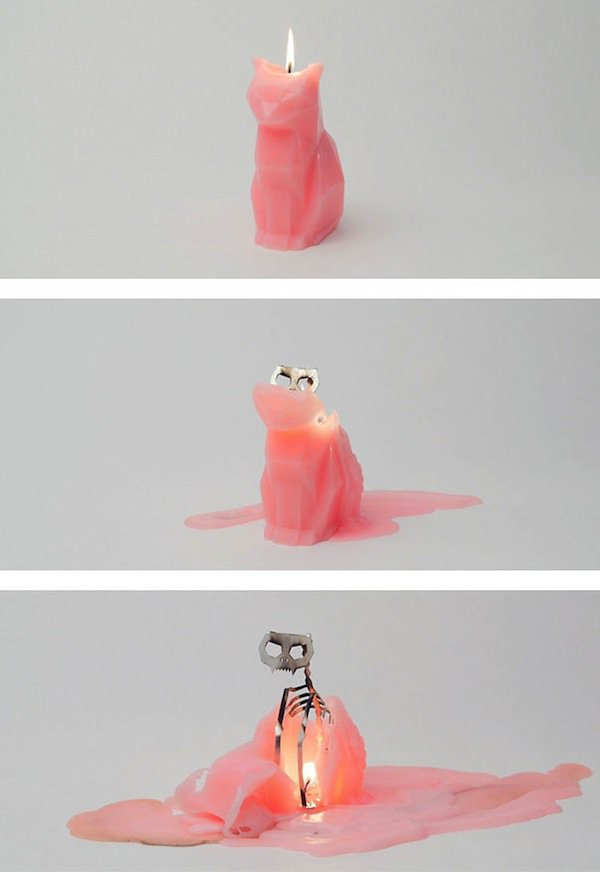 cat-candle