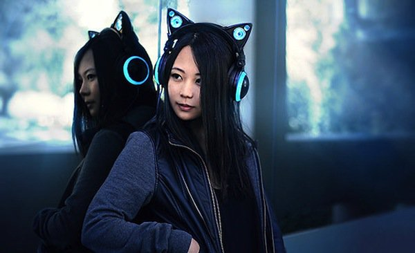 cat-earphones