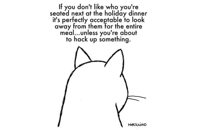 christmas-advice-from-cats-christmas-advice-from-cats-look-away