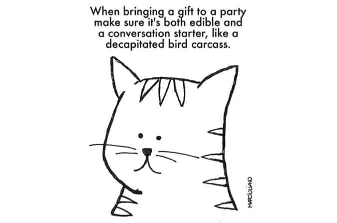 christmas-advice-from-cats-gift
