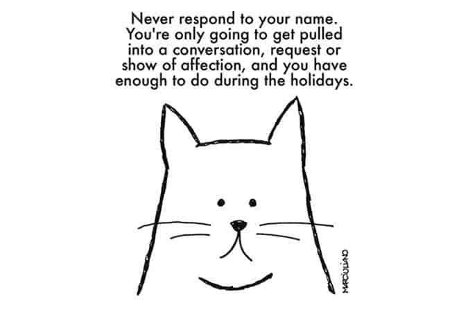 christmas-advice-from-cats-name