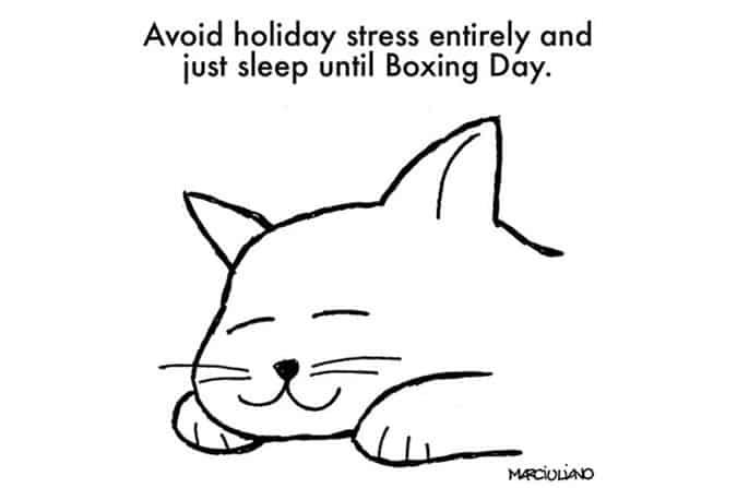 christmas-advice-from-cats-sleep