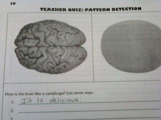 delicious brain