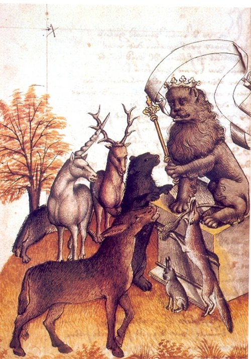 disturbing-middle-ages-animals