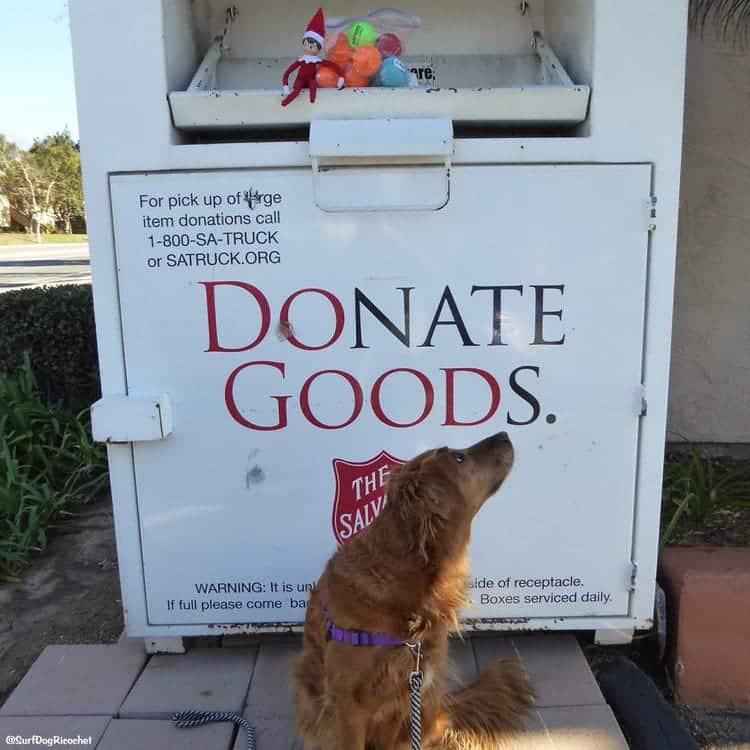 elf balls donating