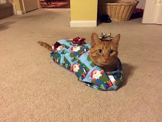 festive-present