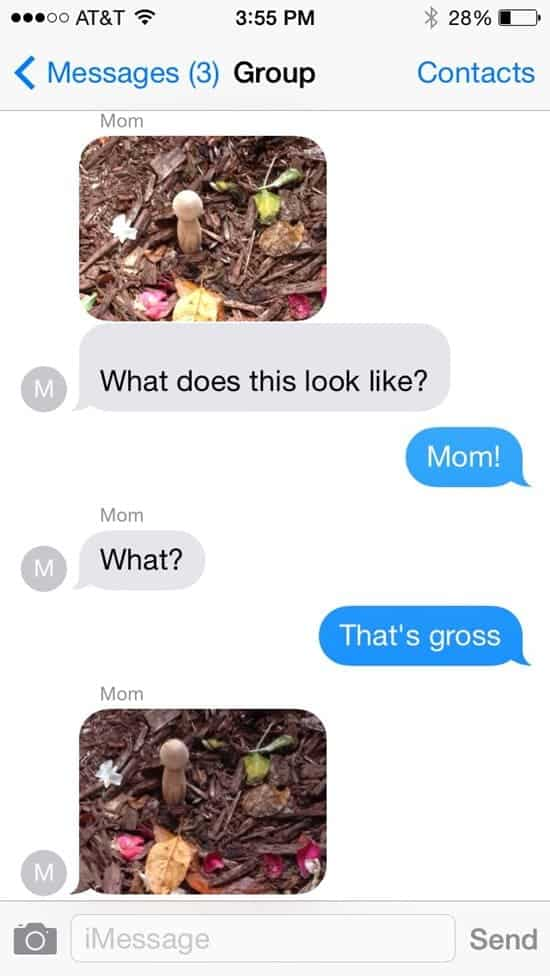 funny-moms-fungi