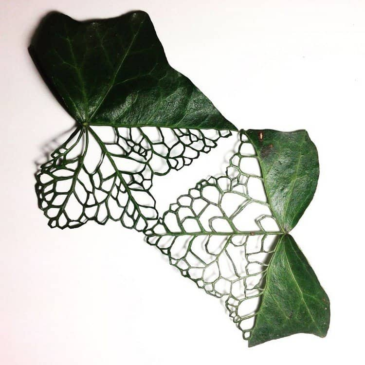 holey embroidered leaf art