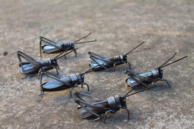 john-brown-green-hand-crickets